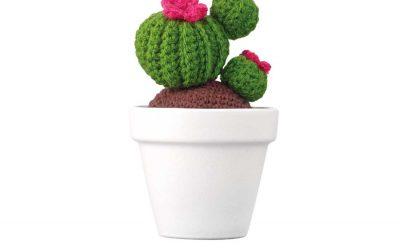 Cactus-book127375