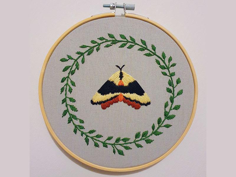 Embroider A Cute Moth